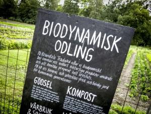 Bio-odling